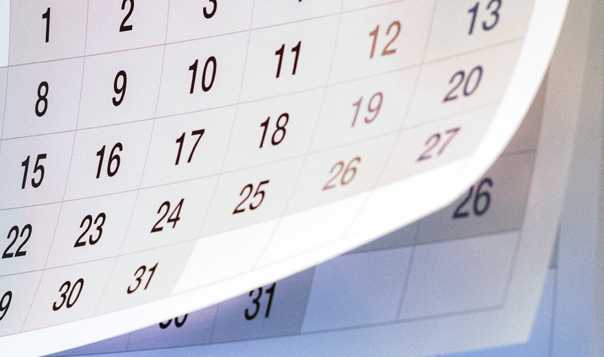 College Holidays and Term Dates